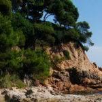 Els camins de ronda a la Costa Brava
