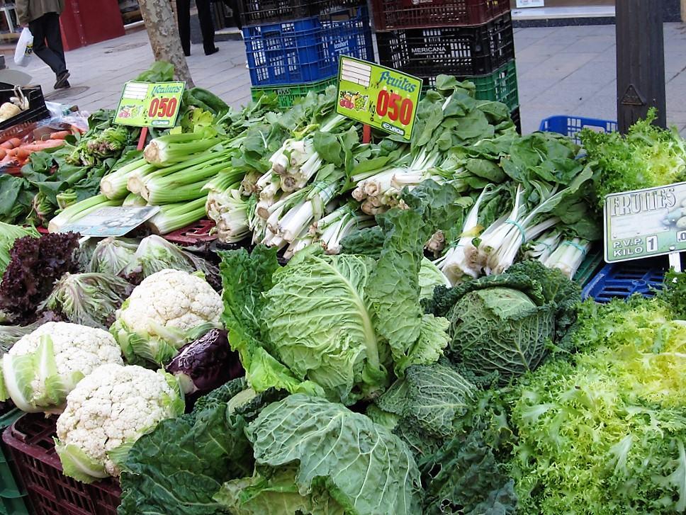 productos ecológicos cultivados en la costa brava